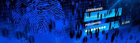 seguridadelectronica